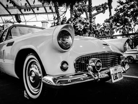 Gray Scale Photography of Car #39206
