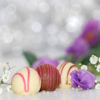 White and Chocolate Sweets With Purple Petal Flower Photo #39262