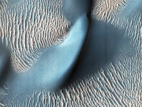 Sand dunes and ripples in Proctor Crater, Mars. Original from NASA.  Free Photo
