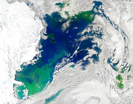 Every southern spring and summer the Ross Sea bursts with life. Original from NASA.  Free Photo