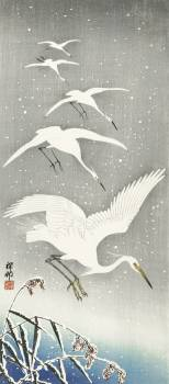 Descending egrets in snow (1925 - 1936) by Ohara Koson (1877-1945). Original from The Rijksmuseum.  #393583