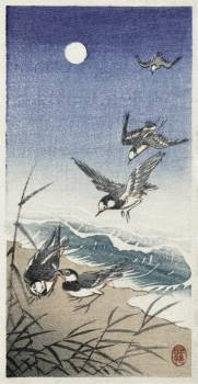 Birds at full moon (1900 - 1936) by Ohara Koson (1877-1945). Original from The Rijksmuseum.  #393586