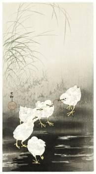 Chicks eating worms (1900 - 1930) by Ohara Koson (1877-1945). Original from The Rijksmuseum.  #393619