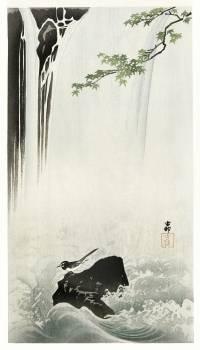 Japanese wagtail at waterfall (1900 - 1930) by Ohara Koson (1877-1945). Original from The Rijksmuseum.  #393624