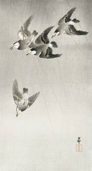 Starlings in the rain (1900 - 1930) by Ohara Koson (1877-1945). Original from The Rijksmuseum.  #393683