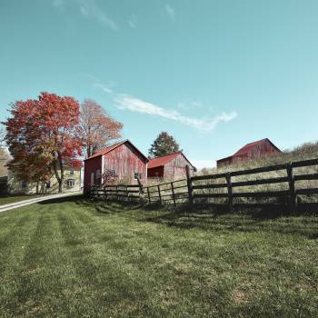 Grouping of small barns in this Monroe County, West Virginia, autumnal rural scene. Original image from Carol M. Highsmith's America, Library of Congress collection.  #393908