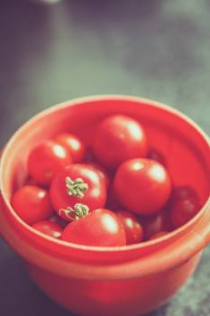 Close up of fresh tomatoes #394559
