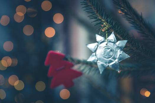 Close up of Christmas tree decorations Free Photo