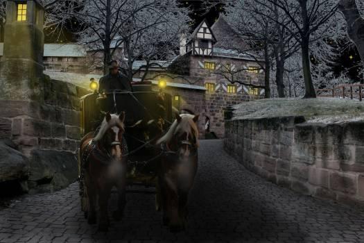 Cold night winter castle #39489