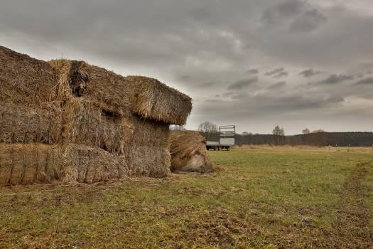 Haystack in a farm #394965