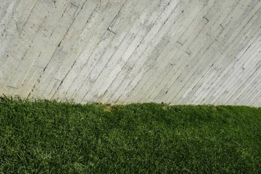 Concrete fence and grass wallpaper Free Photo