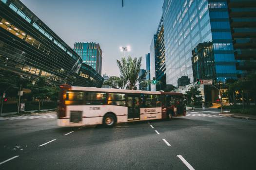 White Bus on Road Near in High Rise Building during Daytime Free Photo