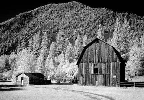 Barn in rural Montana, Infrared View. Original image from Carol M. Highsmith's America, Library of Congress collection.  #396182