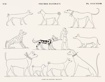 Animal figures from the original paintings from Monuments de l'Égypte et de la Nubie (1835–1845) by Jean François Champollion (1790–1832). Original from The New York Public Library.  #396213