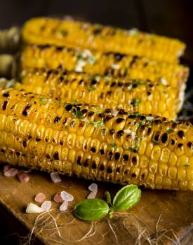 Grilled Corn Free Photo