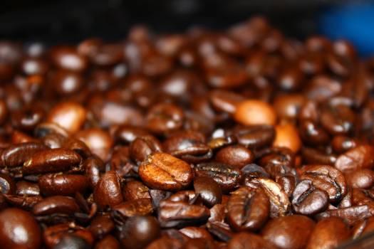Coffee Beans in Macro Lens #39733