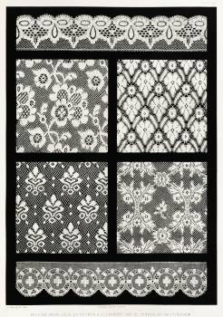 Machine made lace from the Industrial arts of the Nineteenth Century (1851-1853) by Sir Matthew Digby wyatt (1820-1877). #397343