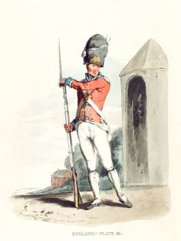 Illustration of Grenadier of the 1st Regiment of Guards from Picturesque Representations of the Dress and Manners of the English(1814) by William Alexander (1767-1816). Original from The New York Public Library.  Free Photo