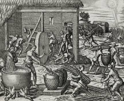 Local indians making sugar in America illustration from Grand voyages (1596) by Theodor de Bry (1528-1598). Original from The New York Public Library.  #397767