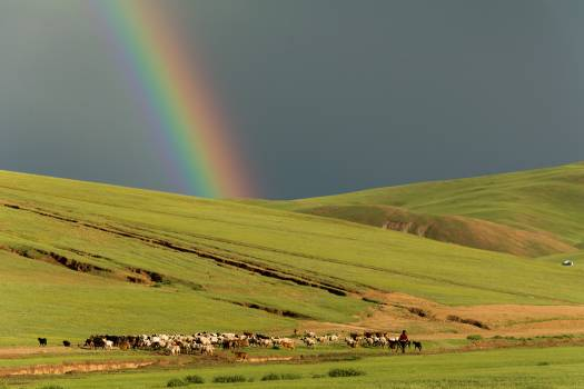 Rainbow in mongolian steppe - free stock photo #398701