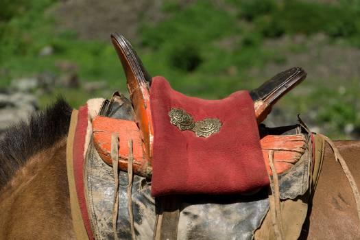 Mongolian Horse Saddle - free stock photo #398713