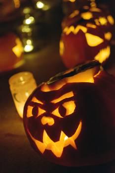 Haloween Pumpkins - free stock photo #398775