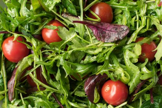 Fresh Salad - free stock photo #399003