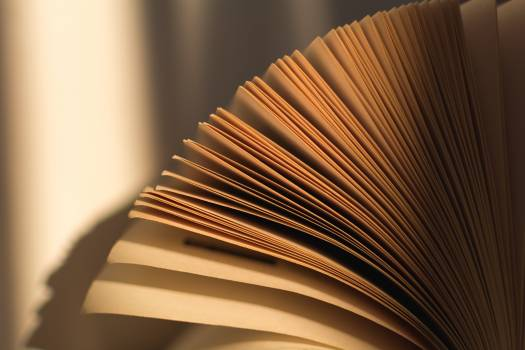 Book Pages - free stock photo #399039