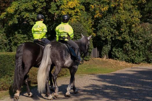 Policemen on horseback - free stock photo Free Photo