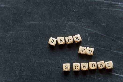 Back to school - free stock photo #399301