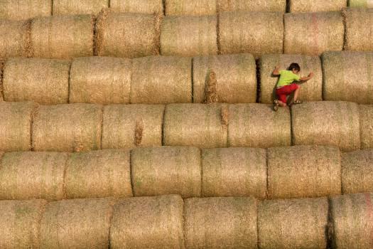 Climbing on stack of straw - free stock photo Free Photo
