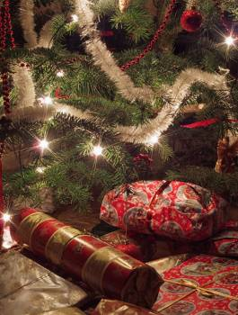 Christmas Gifts Under The Tree - free stock photo #399451