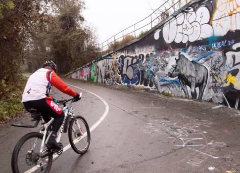 Cyclist With Graffiti Wall - free stock photo Free Photo