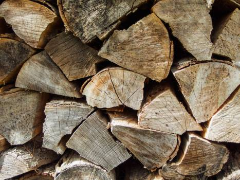 Wooden wall - free stock photo #399936