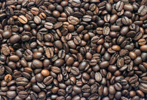 Coffee Beans - free stock photo #400029