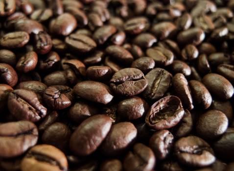 Coffee Beans - free stock photo #400031