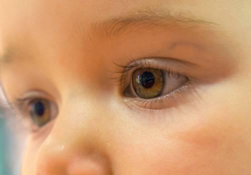 Baby Eyes - free stock photo #400051