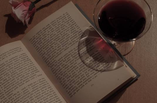Book, wine and rose - free stock photo #400071