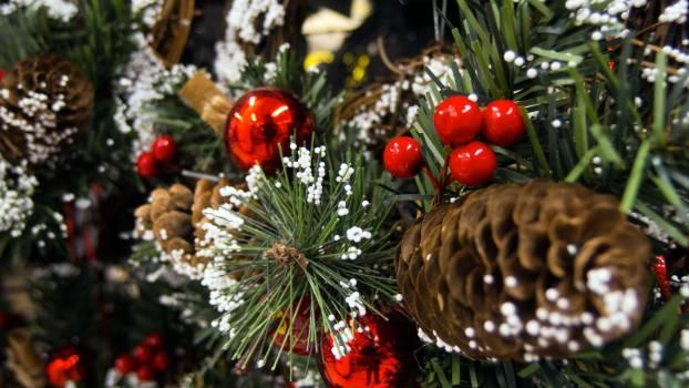 Christmas Tree Decorations - free stock photo #400152