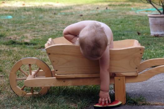 Baby In A Wheelbarrow - free stock photo #400189