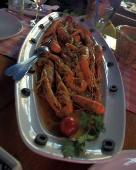 Shrimps - free stock photo #400509
