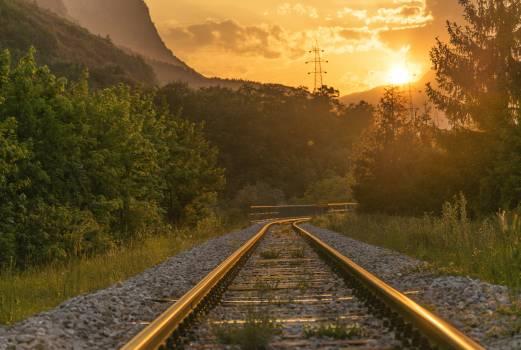 Sunset railroad nature trees #40061