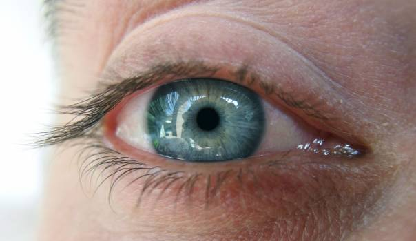 Blue Eye - free stock photo Free Photo