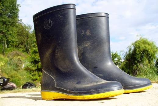 Rubber Boots - free stock photo Free Photo