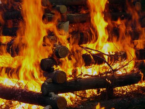 Burning wood - free stock photo #400851