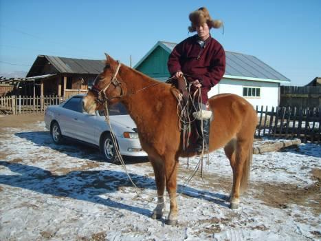 Mongolian man riding a horse - free stock photo Free Photo