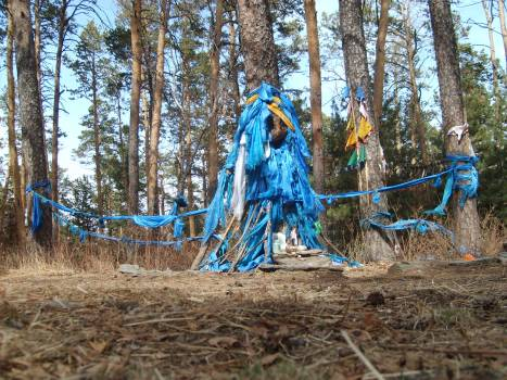 Shamanic place in the forest, Mongolia - free stock photo #401176