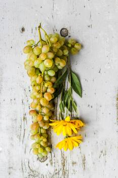 Flowers and Grapes Free Photo #401299