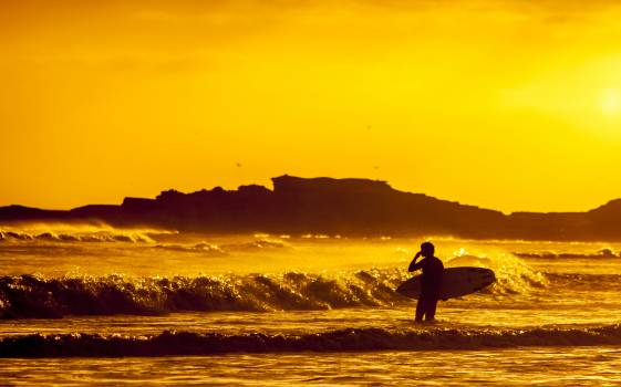 Yellow silhouette waves surfing Free Photo