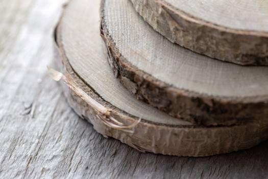 Wood Slices Free Photo #401439